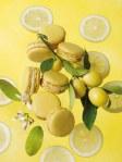 Lemon Macarons (click for recipe)