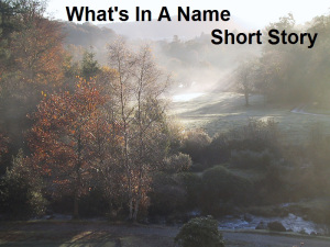 What's in a name 2