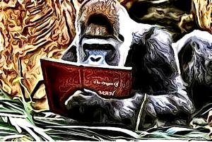 chris_the_story_reading_ape.jpg