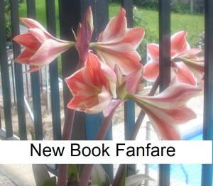 New book fanfare