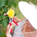 c5849-rosie-gardening-02-smaller