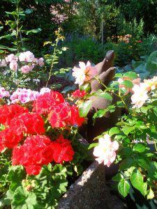 Flower Garden by Lucie Stastkova